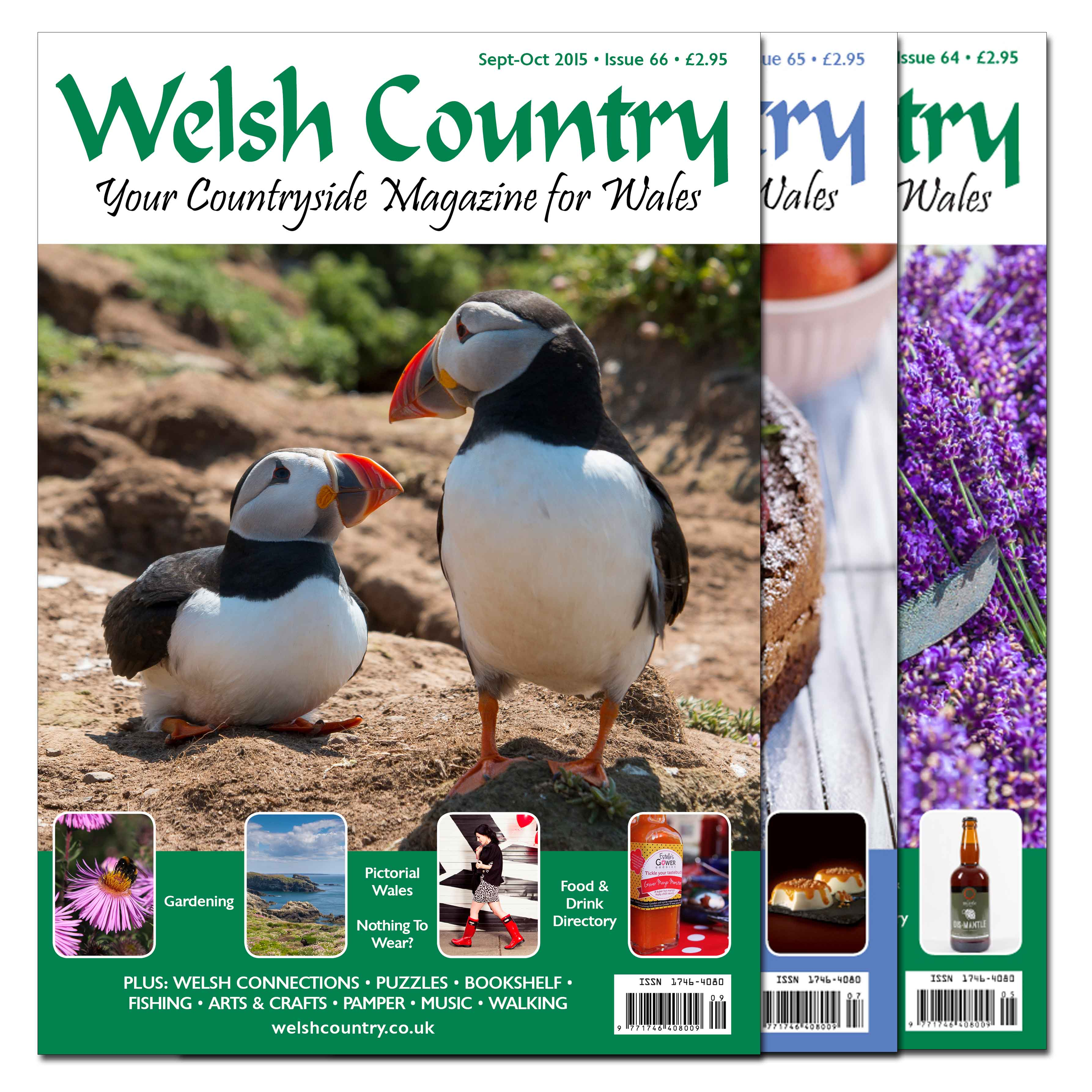 Welsh country magazine subscription