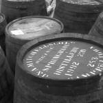 Da Mhile Distillery – Teifi Traditional Farmhouse Cheese