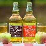 Ty Gwyn Cider