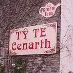 Ty Te Cenarth Tearooms