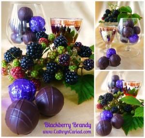 Blackberry Brandy Collage