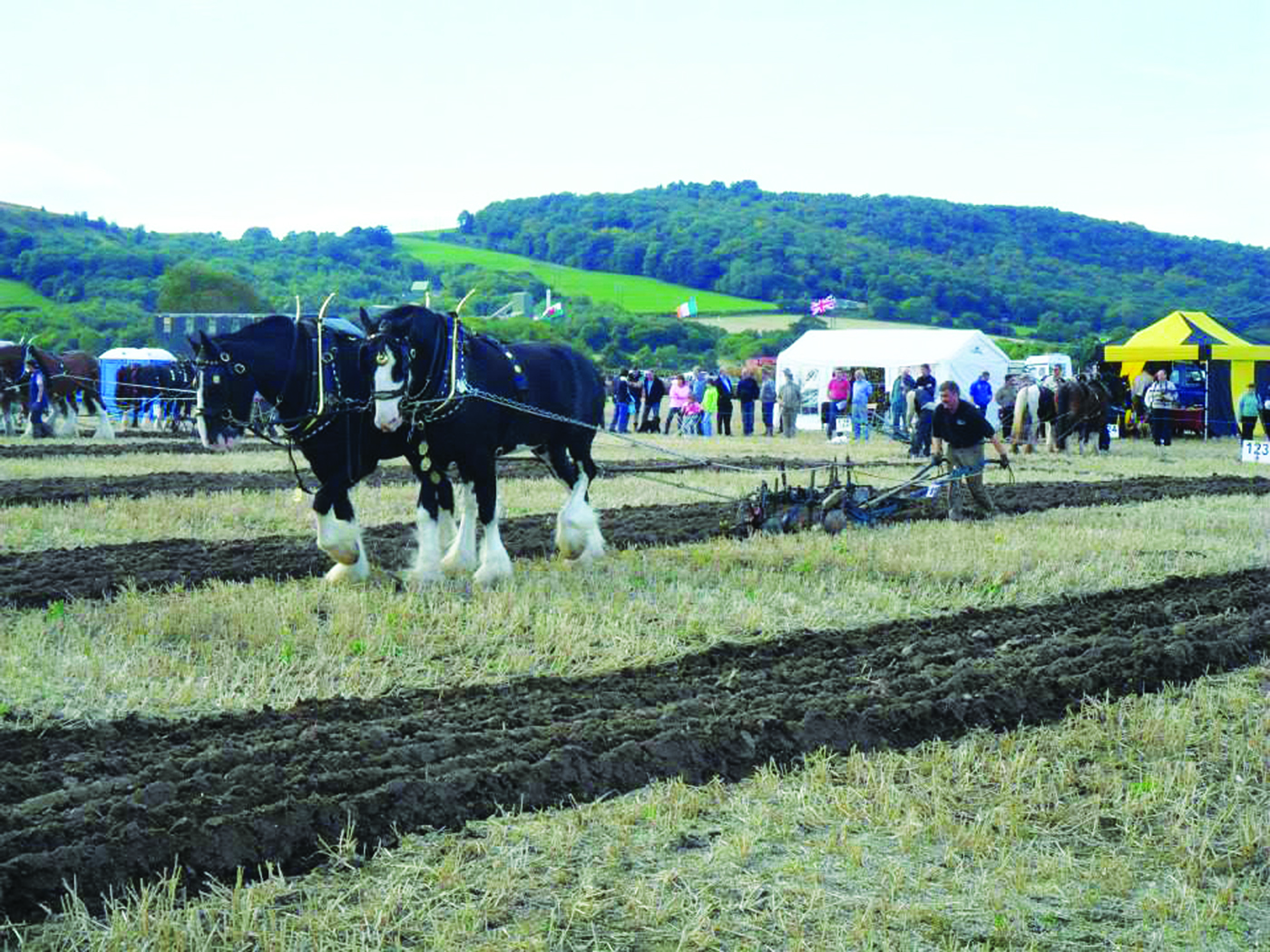 Royal Welsh Agricultural Society