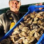 Menai Oysters