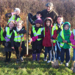 Plant a tree in Haverfordwest with the encouragement  of the Pembrokeshire Coast National Park Authority