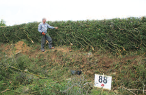 Gwynfor Harding, winner of Class 15 and Champion Hedger