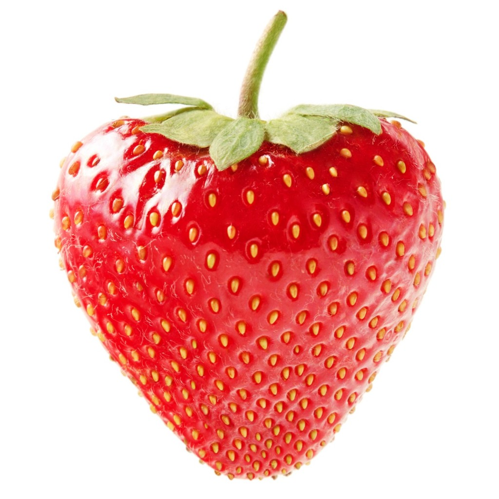 Best Plant Food For Strawberries