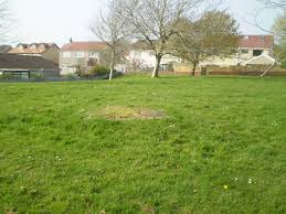 welsh village green courtesy of open spaces society