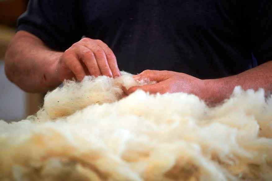 wonderwool wales fleece