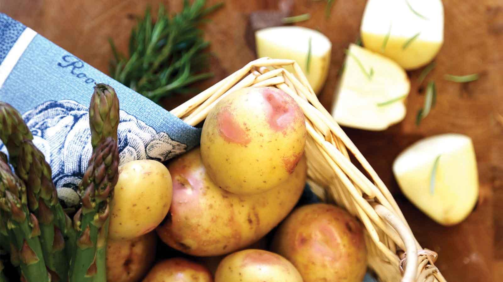 seed-potato-festival