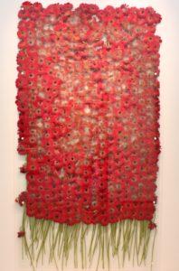 flora exhibition aberystwyth arts centre