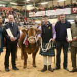 Royal Welsh Winter Fair attracts thousands to sunny Llanelwedd