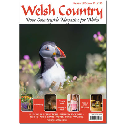 Welsh Country Magazine Mar-Apr 17