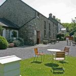 New Quay Honey Farm