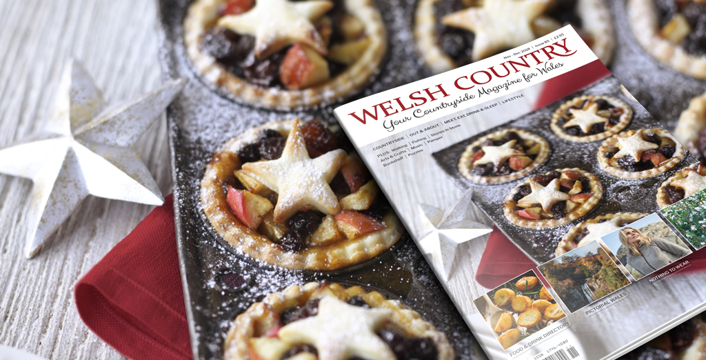 Welsh Country Nov-Dec 2018 cover