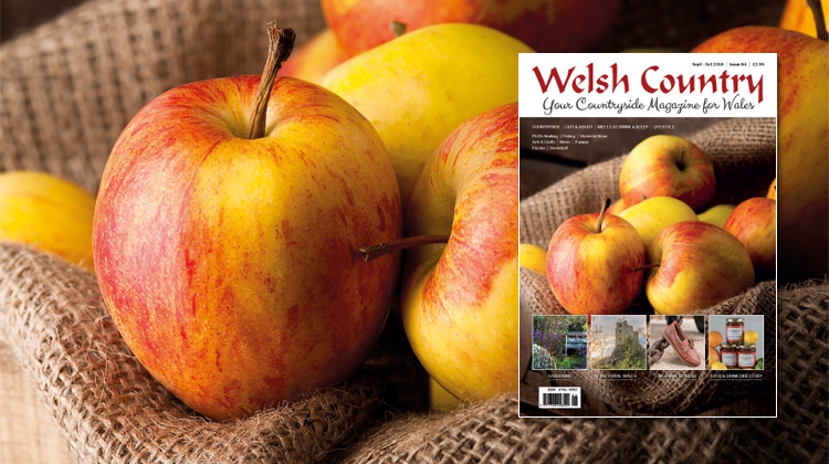 Welsh Country Magazine  Sept – Oct 2018