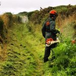 Pembrokeshire Coast Wardens keep access open for walkers