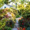 Gardening –    The Early Autumn Garden