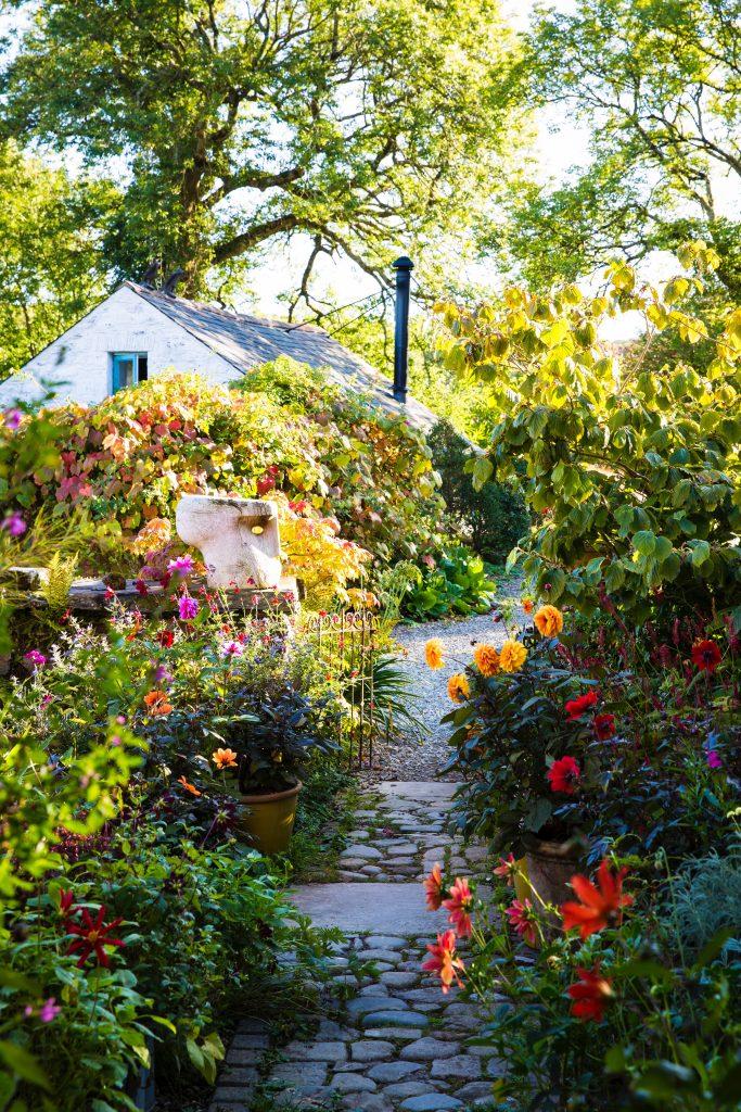 Gardening Dyffryn Fernant photography by  Claire Takacs