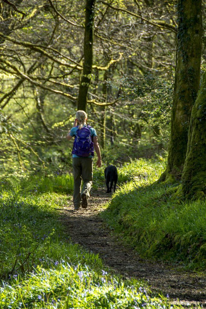 Walking in Wales with dog in Cwm Gwaun & Carn Ingli