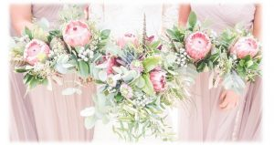 royal welsh bloom 2