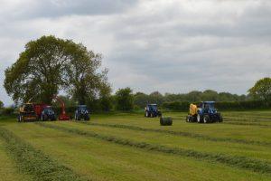 welsh grassland silage comp 1