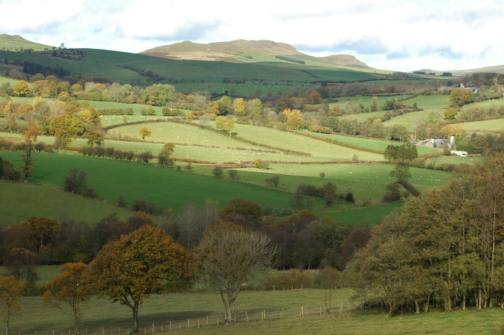 Wind turbines for Powys. Llandegley Rocks. Photo by Diana Hulton